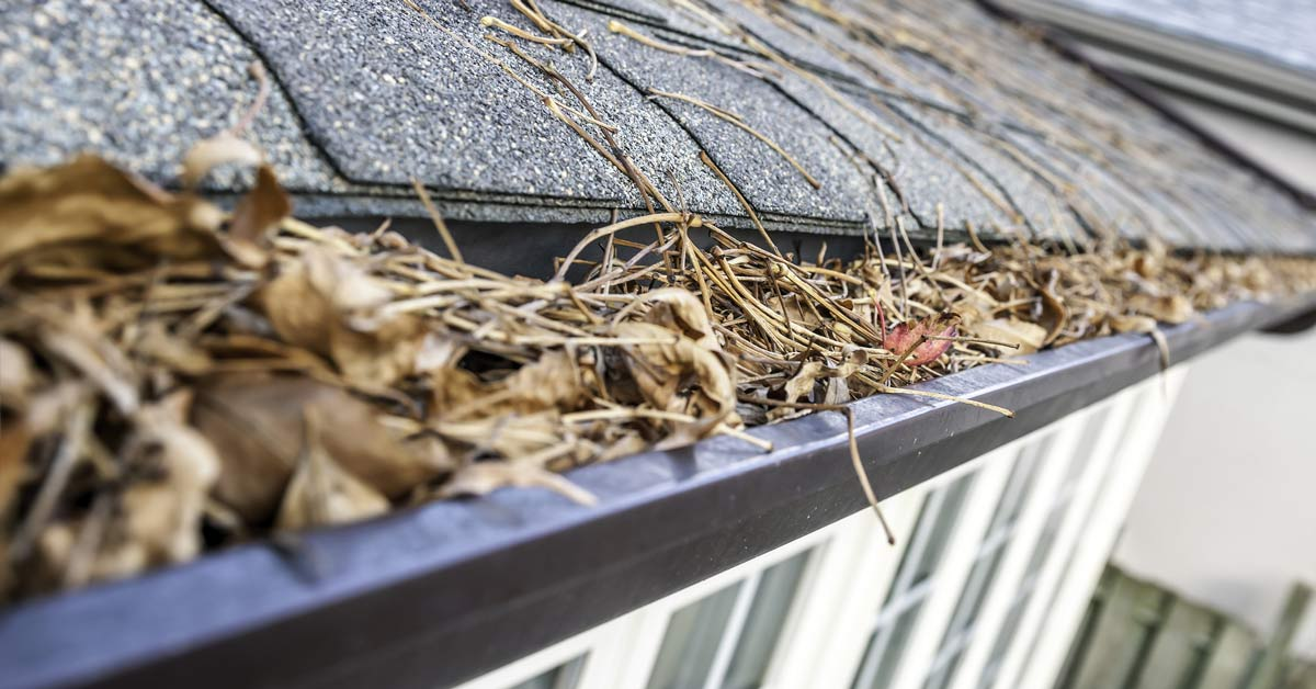 Why You Need Gutter Guards